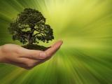 Equinix ontvangt LEED Gold duurzaamheidscertificaat voor nieuwste datacenter